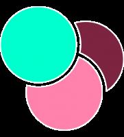 logo-borde-7